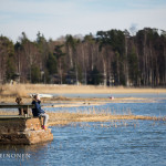 Auringonpalvontaa - Kuva: Tuomas Heinonen