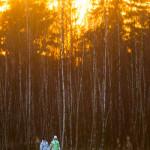 Iltatunnelmaa - Kuva: Tuomas Heinonen