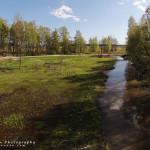 Kevättunnelmaa tulvaniityllä - Kuva: Tuomas Heinonen