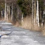 Altaan polut vielä jäässä - kuva Timo Leppäharju