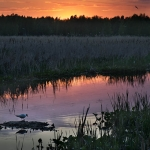 Auringonlasku - Kuva Esa Mälkönen