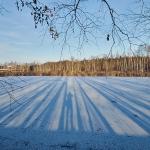 Joulukuun pitkät varjot - Kuva Jukka Ranta