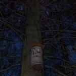 Liito-orava, Esa Mälkkönen