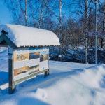 Lumi tuli, lumi suli – Viikot 5-8/2019