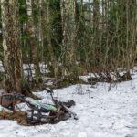 Roska metsässä-Kuva Paul Stevens