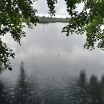 Kesän tyyppikuva - vähän välia sataa - Kuva: Tommi Heinonen