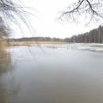 Viikonloppuna vesi nousi takaisin tulvaniitylle - Kuva: Tommi Heinonen