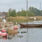 Suiston romut - Kuva: Tommi Heinonen