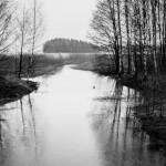 Puro on ollut jo pitkään jäätön- Kuva: Timo Leppäharju