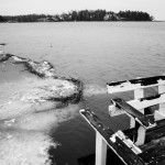 Nuottalahti on jäätön - Kuva: Timo Leppäharju