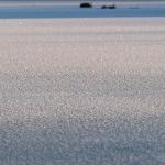 Kuurainen jää - Kuva Paul Stevens