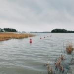 Laituri 29 - Kuva: Jukka Ranta