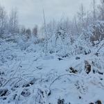 Lauantaina oli maisema talvinen - Kuva: Jukka Ranta
