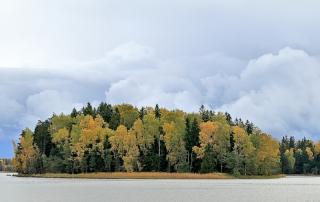 Pirisaari, ruska ja lähestyvä sade - Kuva: Jukka Ranta