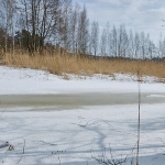 Finnoonpuro on jäässä - Kuva: Jukka Ranta