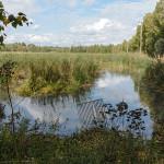 Altaan ruoppauskulma - Kuva: Jukka Ranta
