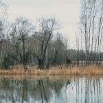 Tulvaniitty on järvenä - Kuva: Jukka Ranta