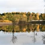 Tulvaniitty - Kuva: Tommi Heinonen