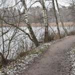 Ojissa ja puroissa vesi on korkealla - Kuva: Tommi Heinonen