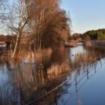 Tulvaniitty on järvenä - Kuva: Tommi Heinonen