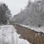 Puro on sula - Kuva: Tommi Heinonen
