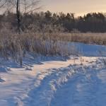 Luminen luontopolku - Kuva: Tommi Heinonen