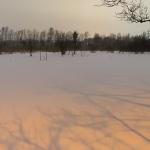 Ilta lumisateen jälkeen - Kuva: Paul Stevens