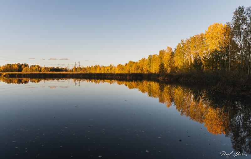 Altaiden ruska - Kuva: Paul Stevens