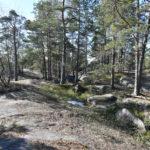 Finnoonkalliolla - Kuva: Tommi Heinonen