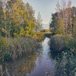 Ilta purolla - Kuva Jukka Ranta