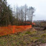 Aidattu metsä - Kuva Paul Stevens