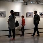 Valokuvanäyttely, perhosia ja korentoja – Viikot 33–34/2018