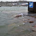 Merivesi laiturilla - Kuva: Tommi Heinonen