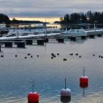 Viimeiset veneet - Kuva Tommi Heinonen