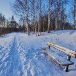 Pakkasaamun polku - Kuva Jukka Ranta