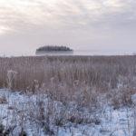 Pirisaari-3 - Kuva Paul Stevens