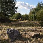 Niittoa, puiden istutusta ja talonrakentamista – Muutosraportti 10/2020
