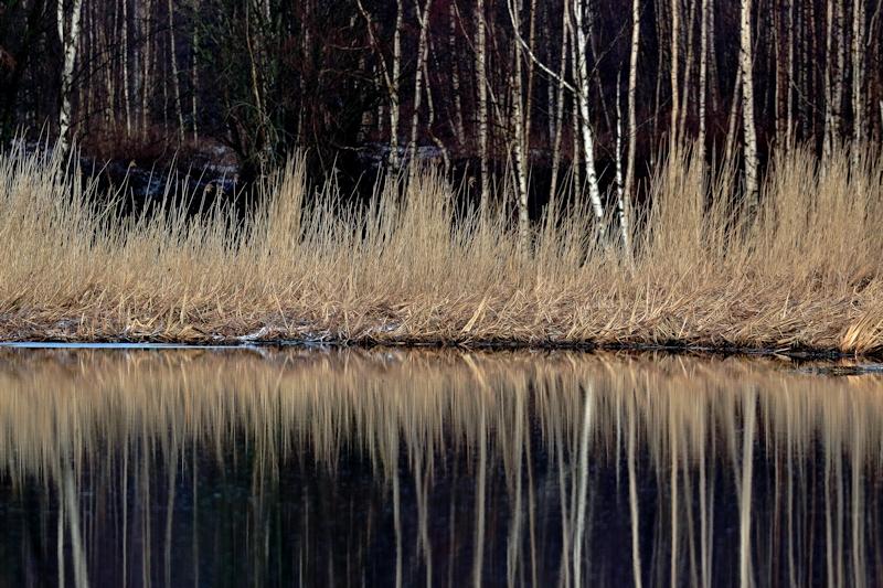 Allas on jo laajalti jäästä vapaa - Kuva: Jukka Ranta