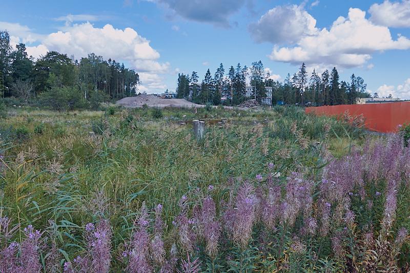 Näkymä Finnoonsillalle - Kuva: Jukka Ranta