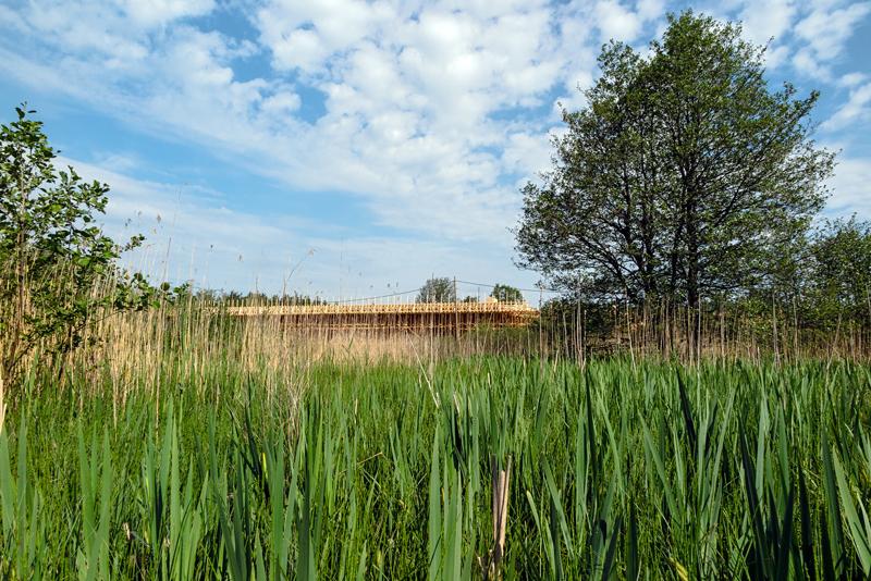 Tulvaniityn polku on kasvamassa umpeen - Kuva: Jukka Ranta