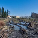 Matroonankadun kaava-alueen eteläreunaa - Kuva Jukka Ranta