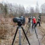 Lintuharrastustapahtuma Suomenojalla 3.5.2015 klo 10-15