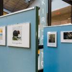 Kilpailunäyttely avautui Kirjasto Omenassa
