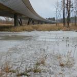 Puro on jäässä, mutta jään päällä vettä - Kuva: Jukka Ranta