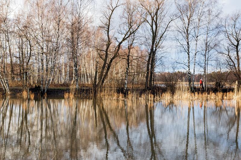 Vesi peittää edelleen tulvaniittyä - Kuva: Jukka Ranta