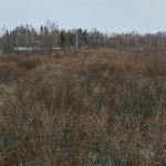 Tulvaniityn pohjoisosa - Kuva: Jukka Ranta