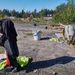 Tomaattipelto tänään - Kuva: Jukka Ranta