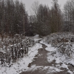 Räntää ja märkää lunta - Kuva: Tommi Heinonen