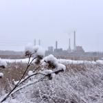 Lumi kuorrutti maiseman alkuviikolla - Kuva: Tommi Heinonen